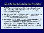 merit review criteria guiding principles
