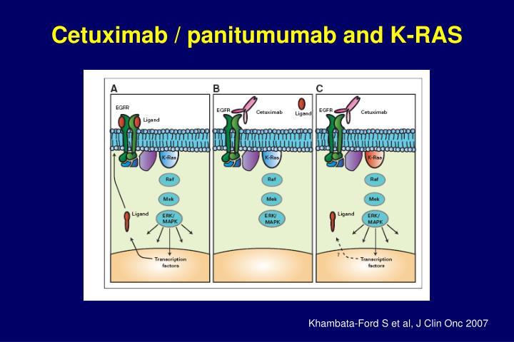 Cetuximab / panitumumab and K-RAS
