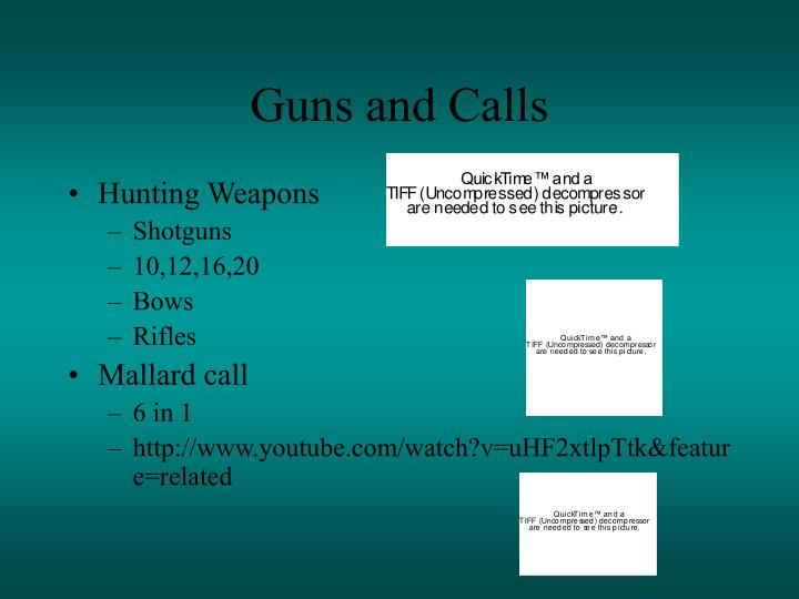 Guns and Calls