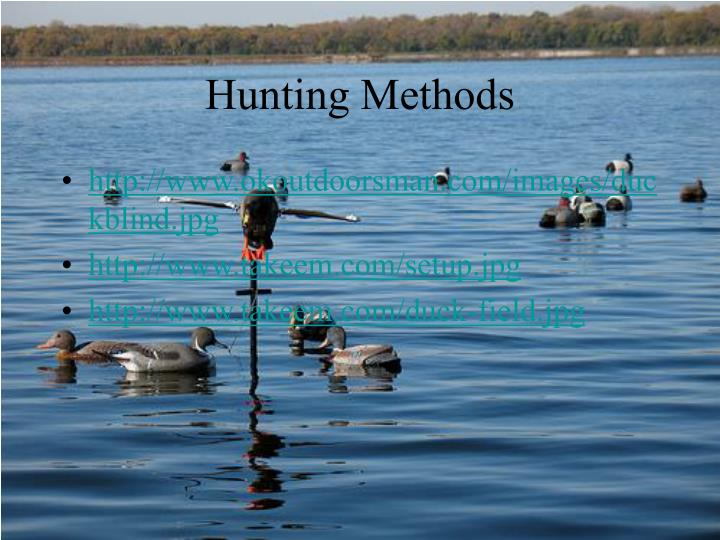 Hunting Methods