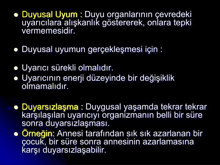 Duyusal Uyum :