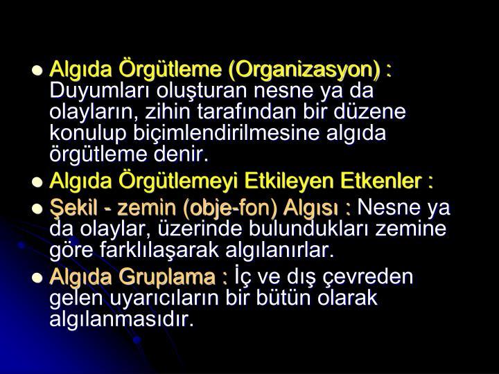 Algıda Örgütleme (Organizasyon) :