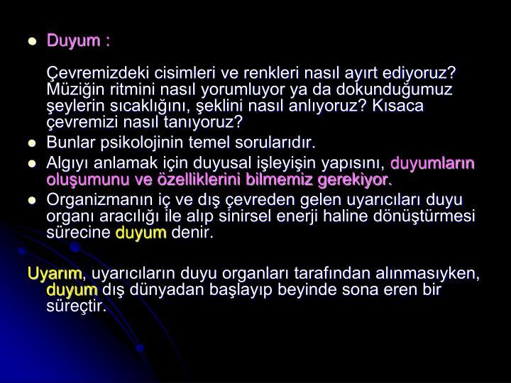 Duyum :