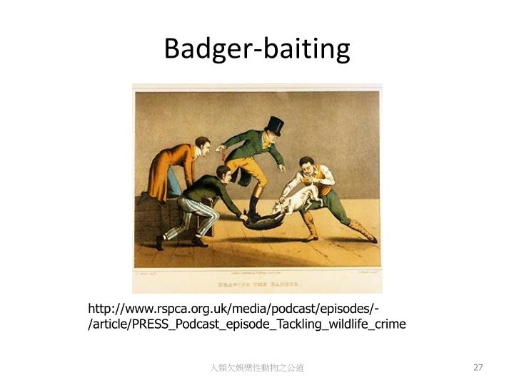 Badger-baiting