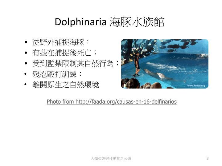 Dolphinaria