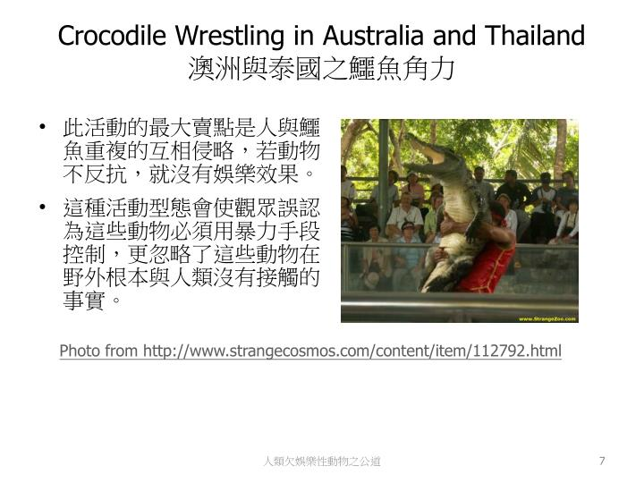 Crocodile Wrestling in Australia and Thailand