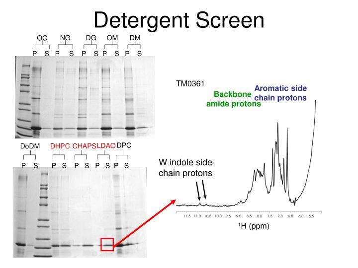 Detergent Screen