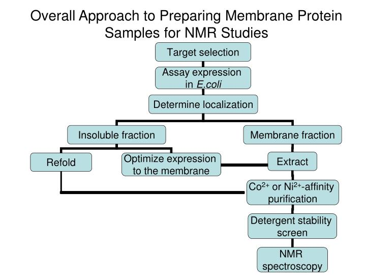 Overall Approach to Preparing Membrane Protein