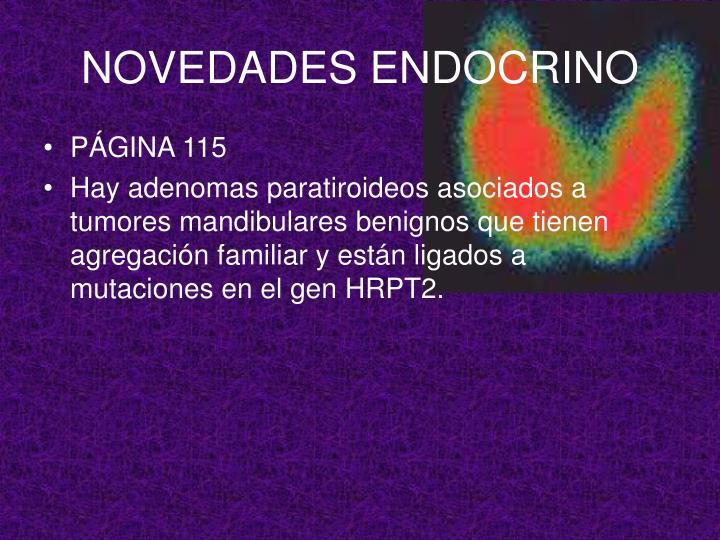 NOVEDADES ENDOCRINO