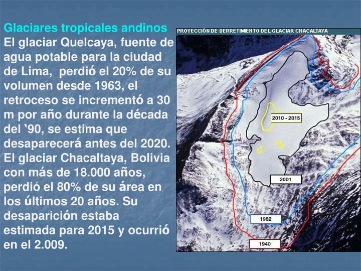 Glaciares tropicales andinos