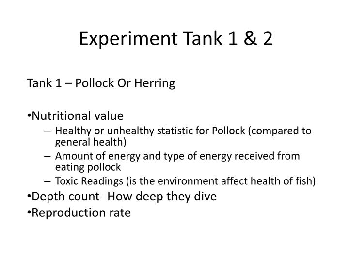 Experiment Tank 1 & 2