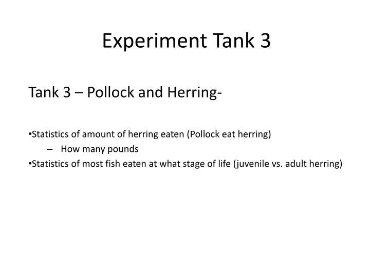 Experiment Tank 3