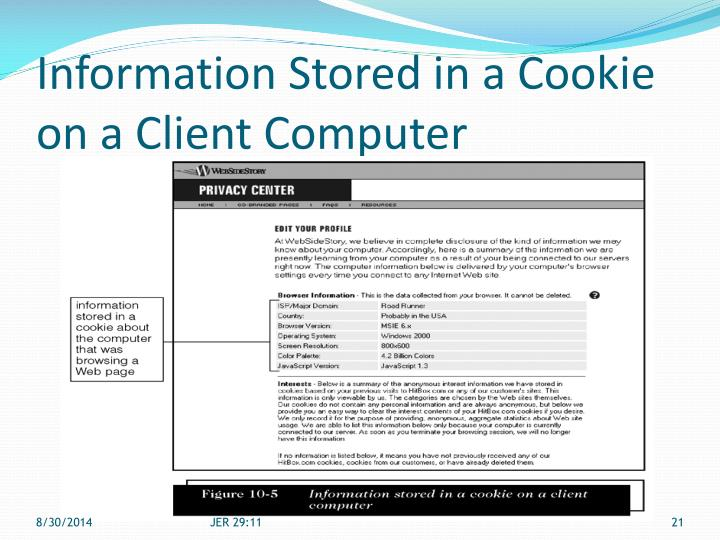 Information Stored in a Cookie on a Client Computer