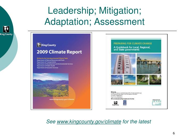 Leadership; Mitigation; Adaptation; Assessment