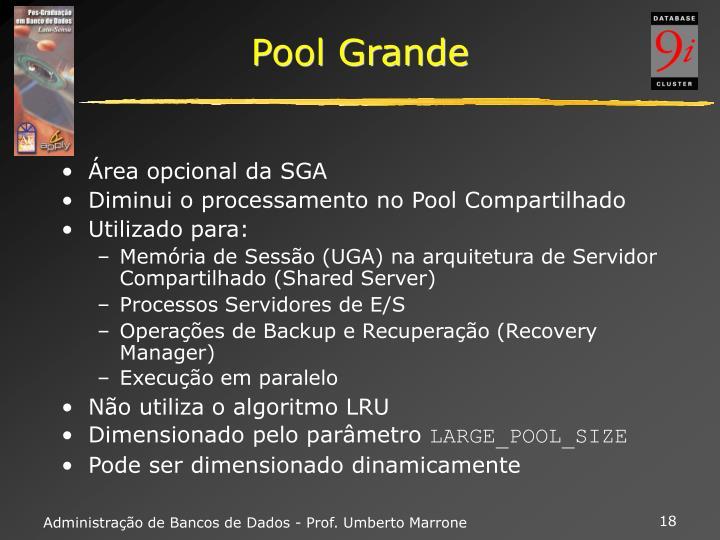 Pool Grande