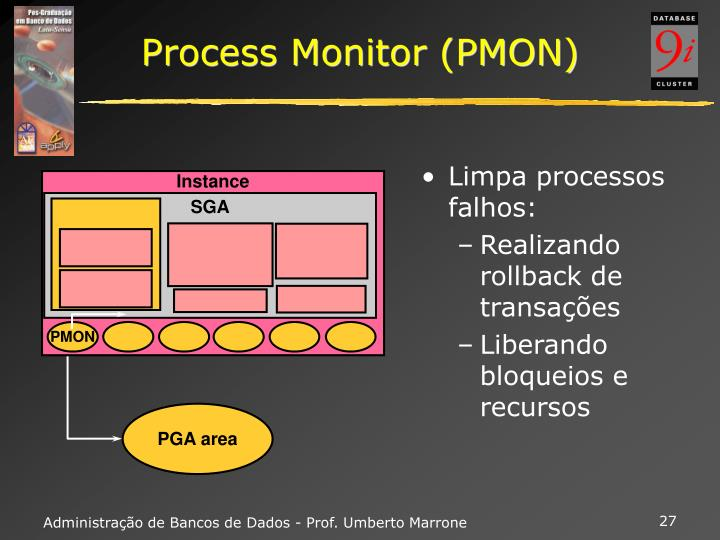 Process Monitor (PMON)