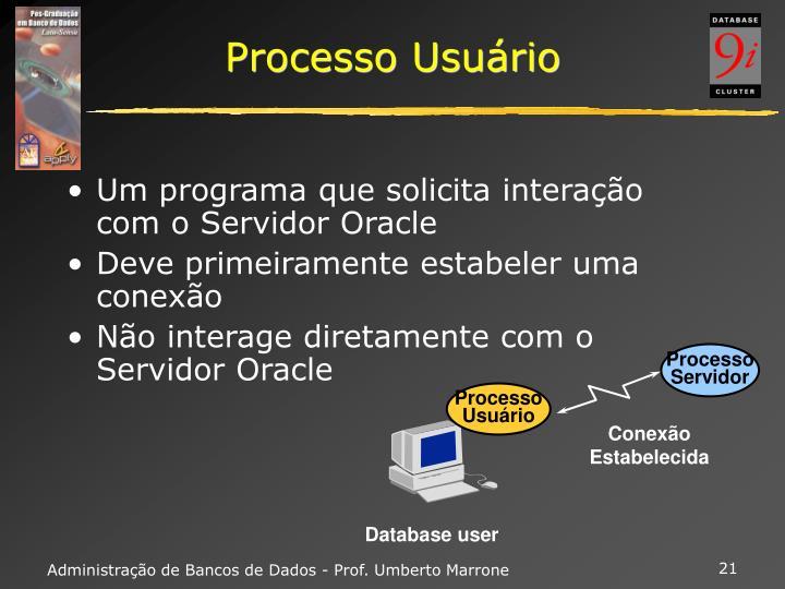 Processo Usuário