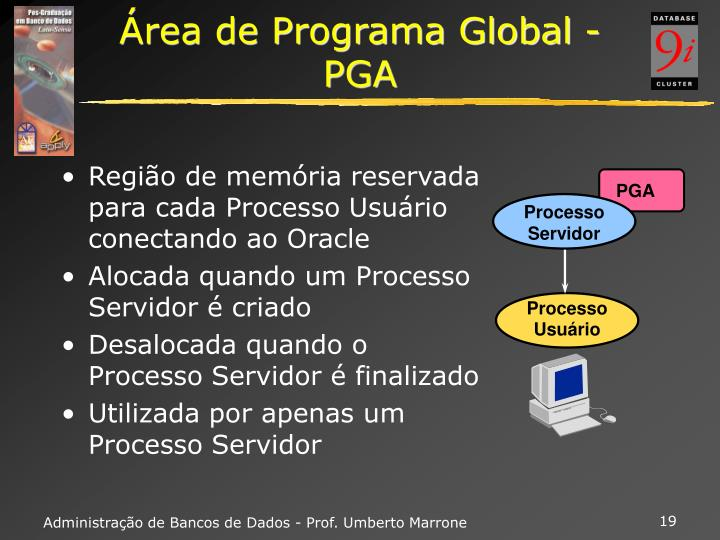 Área de Programa Global - PGA