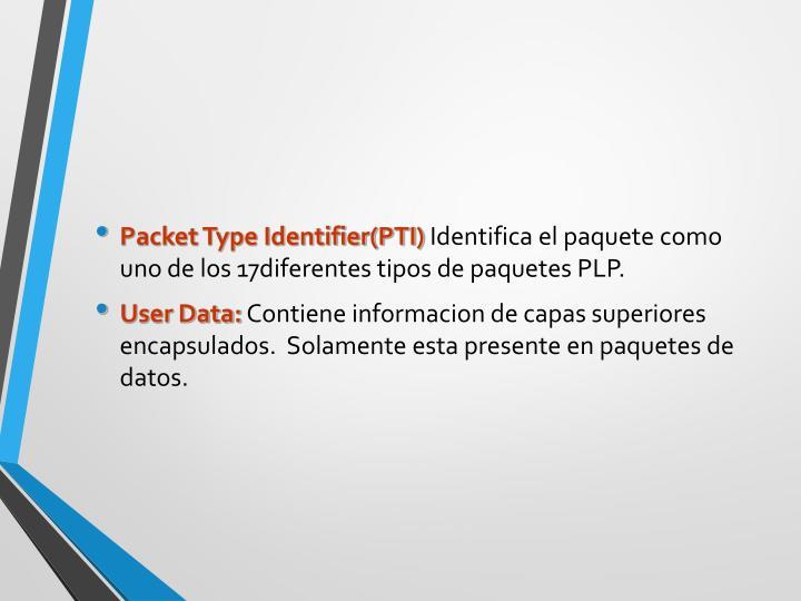 Packet Type Identifier(PTI)