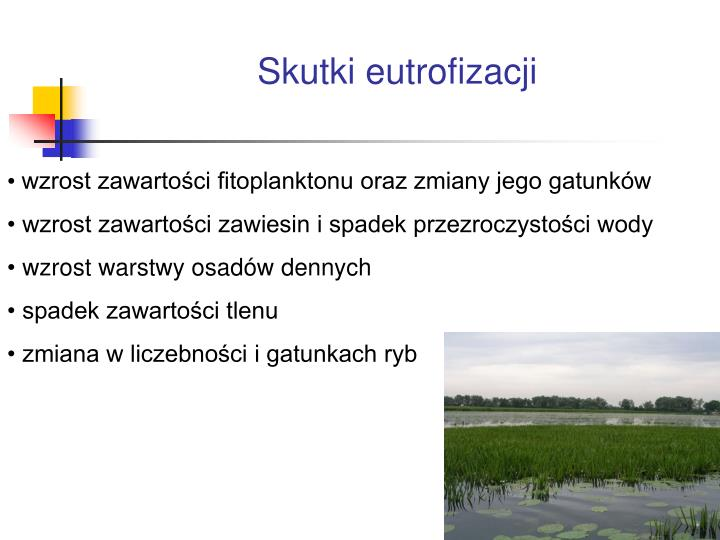 Skutki eutrofizacji