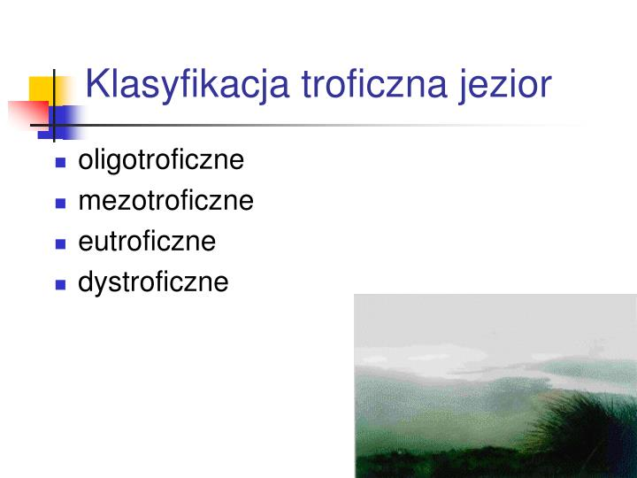 Klasyfikacja troficzna jezior