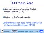 roi project scope