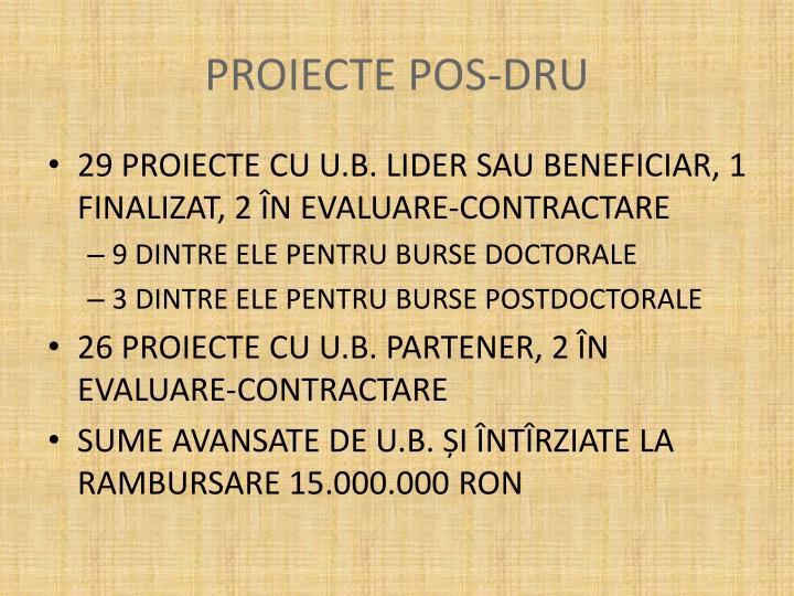 PROIECTE POS-DRU