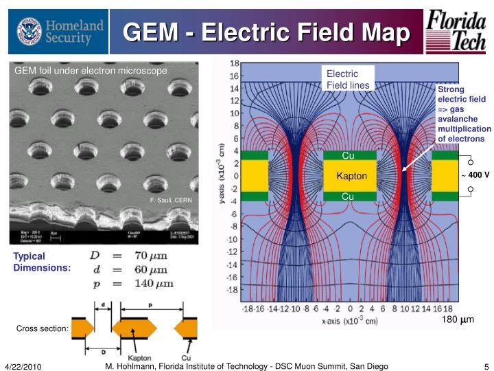 GEM - Electric Field Map