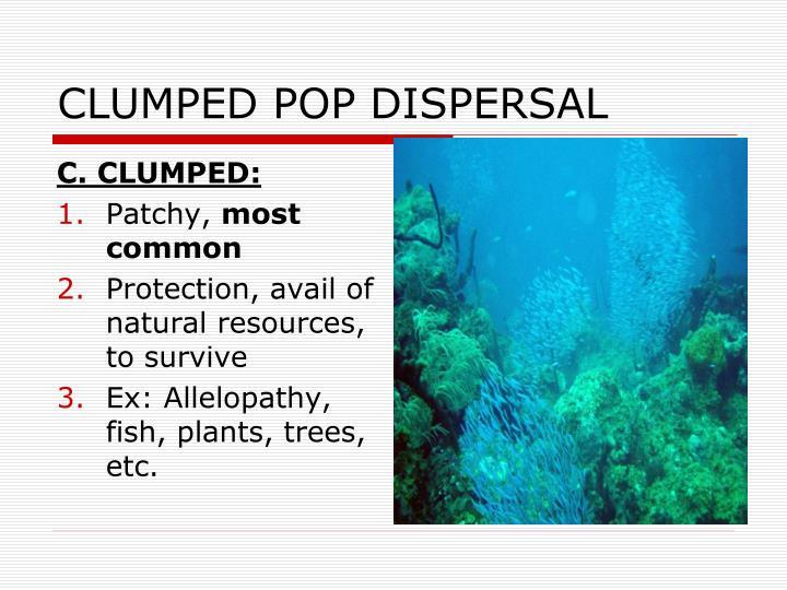 CLUMPED POP DISPERSAL
