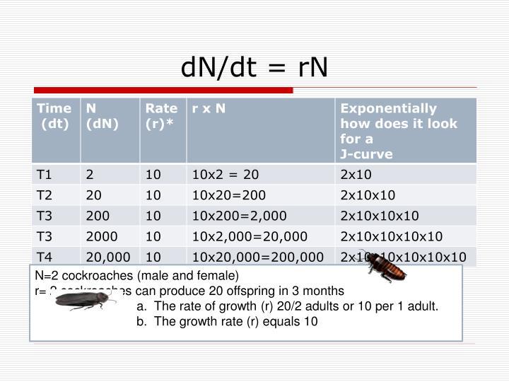 dN/dt = rN