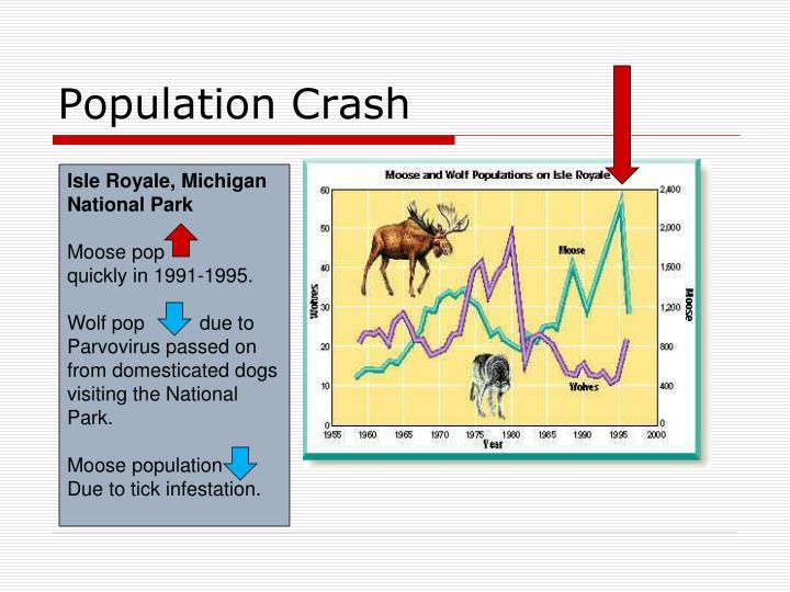 Population Crash