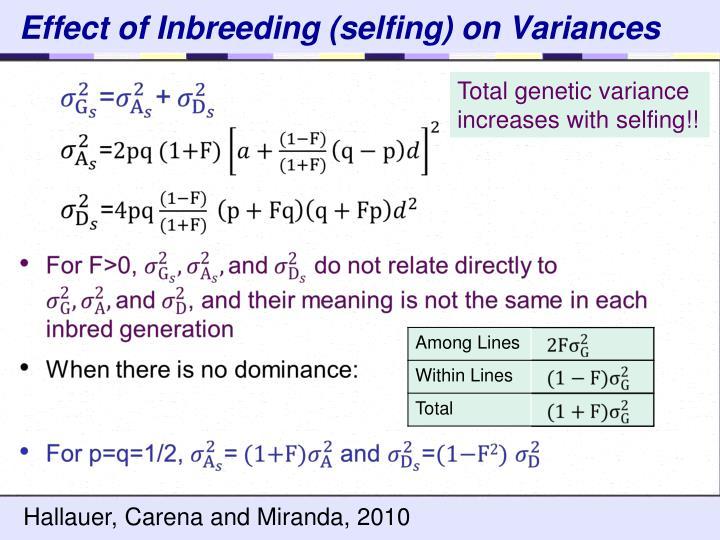 Effect of Inbreeding (selfing) on Variances