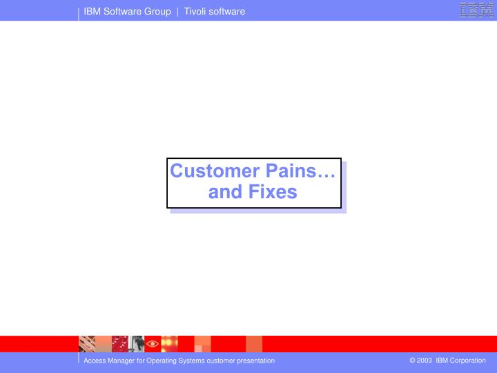 Customer Pains…