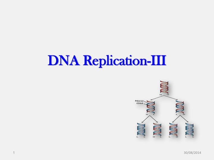Dna r eplication iii