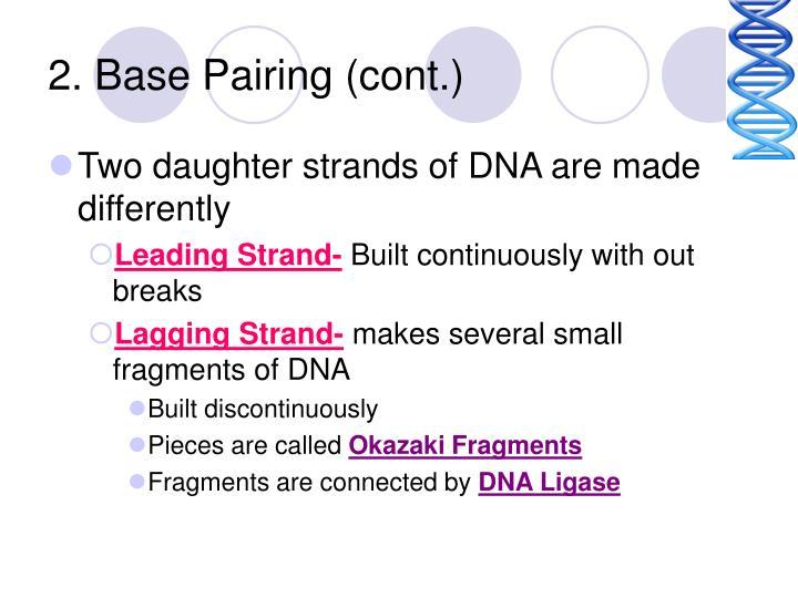 2. Base Pairing (cont.)