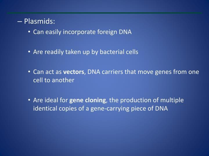 Plasmids: