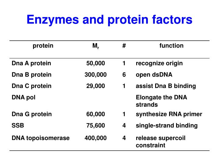 Enzymes and protein factors