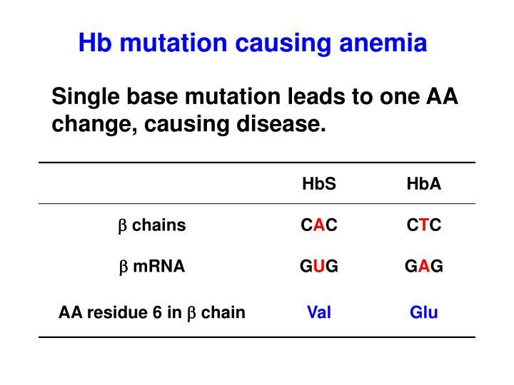 Hb mutation causing anemia