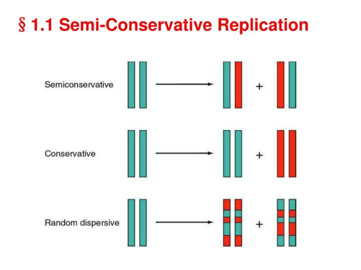 §1.1 Semi-Conservative Replication