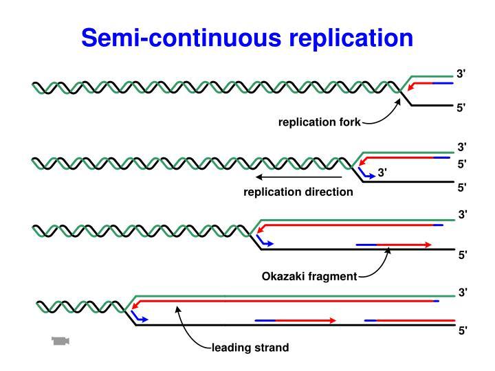 Semi-continuous replication