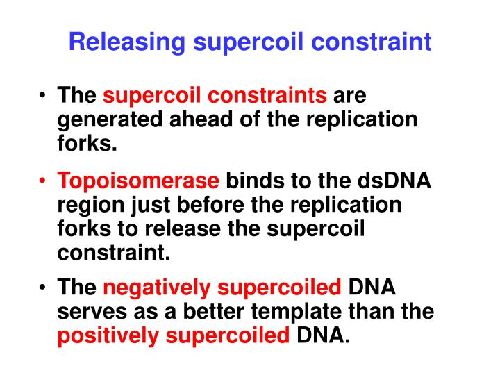 Releasing supercoil constraint