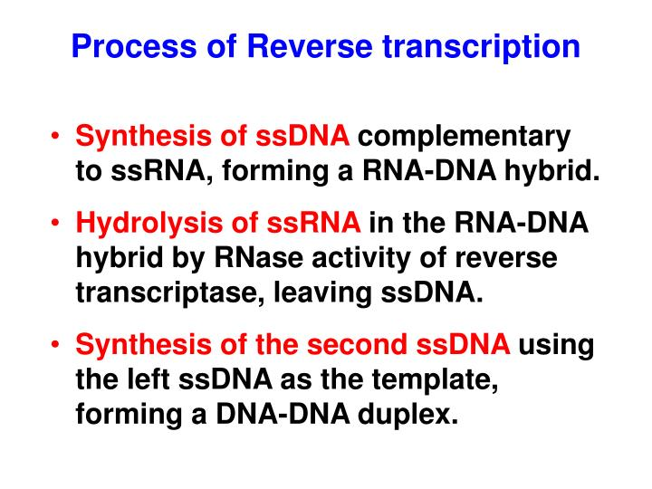 Process of Reverse transcription
