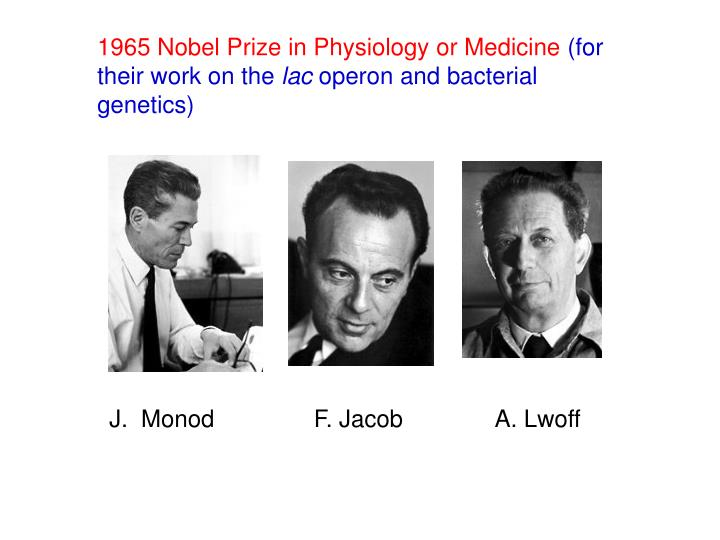 1965 Nobel Prize in Physiology or Medicine