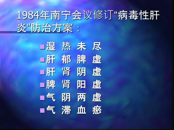 1984年南宁会议修订