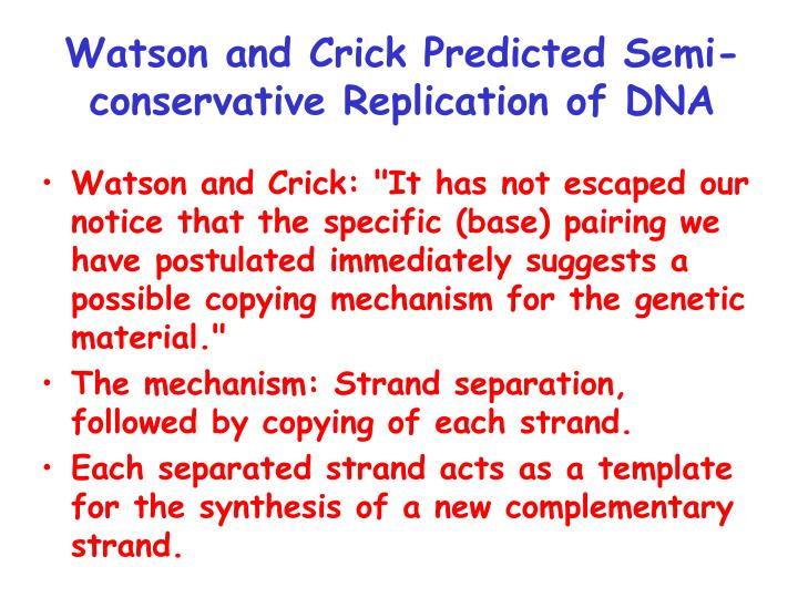 Watson and Crick Predicted Semi-conservative Replication of DNA