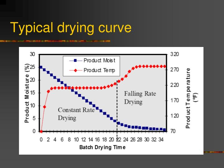 Typical drying curve