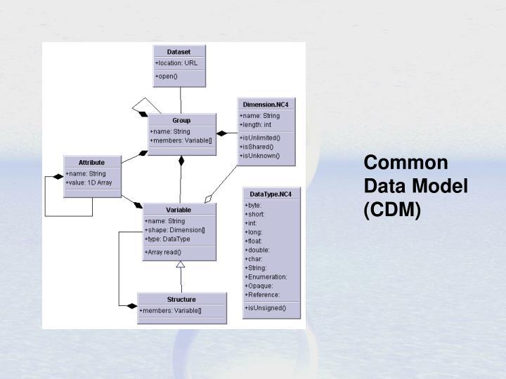 Common Data Model (CDM)