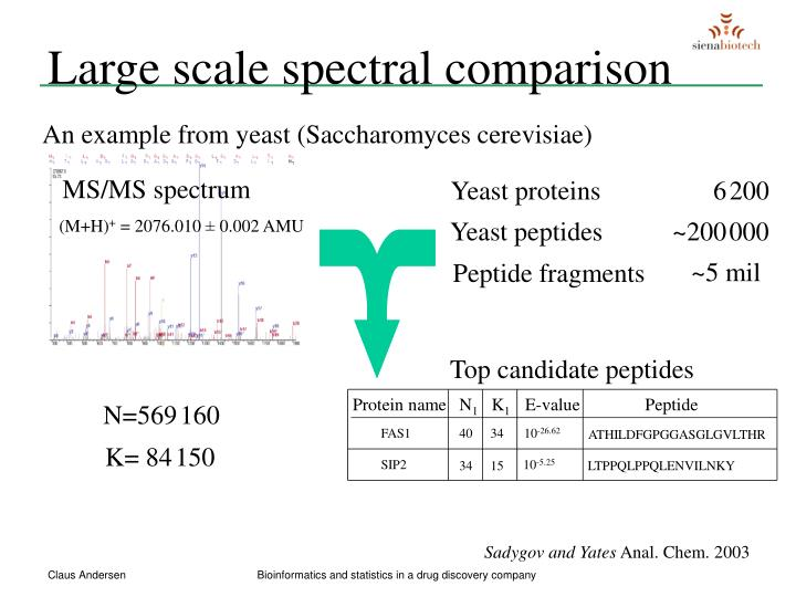 Top candidate peptides