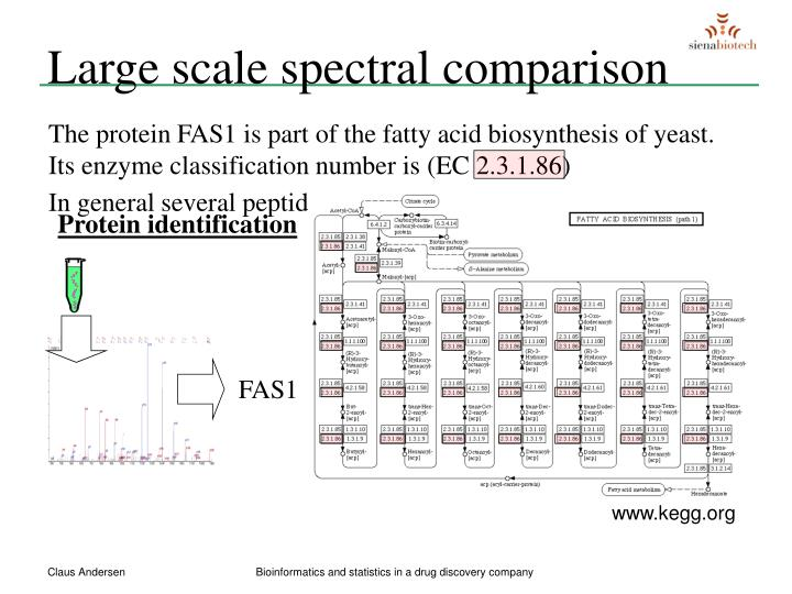 Large scale spectral comparison
