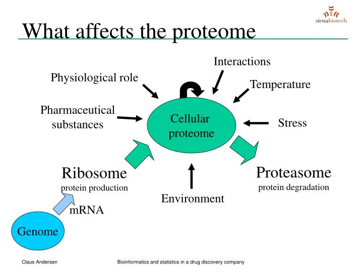What affects the proteome